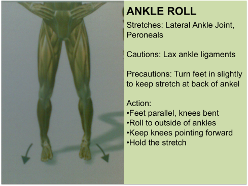 ankle-roll